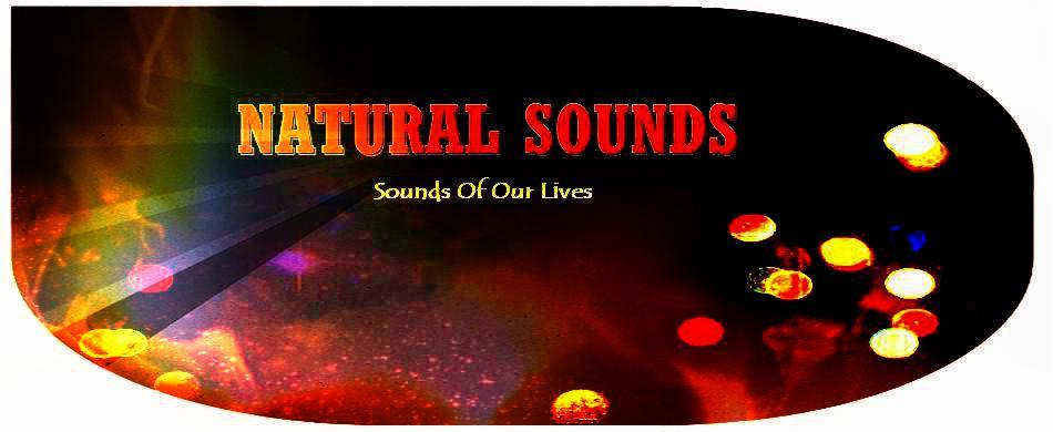 950x390-NATURAL-SOUNDS-IS-111